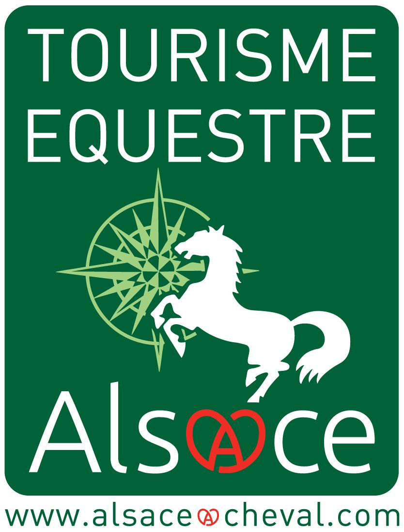 logo-TE-vert-grand
